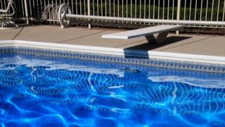 water bugs in pool